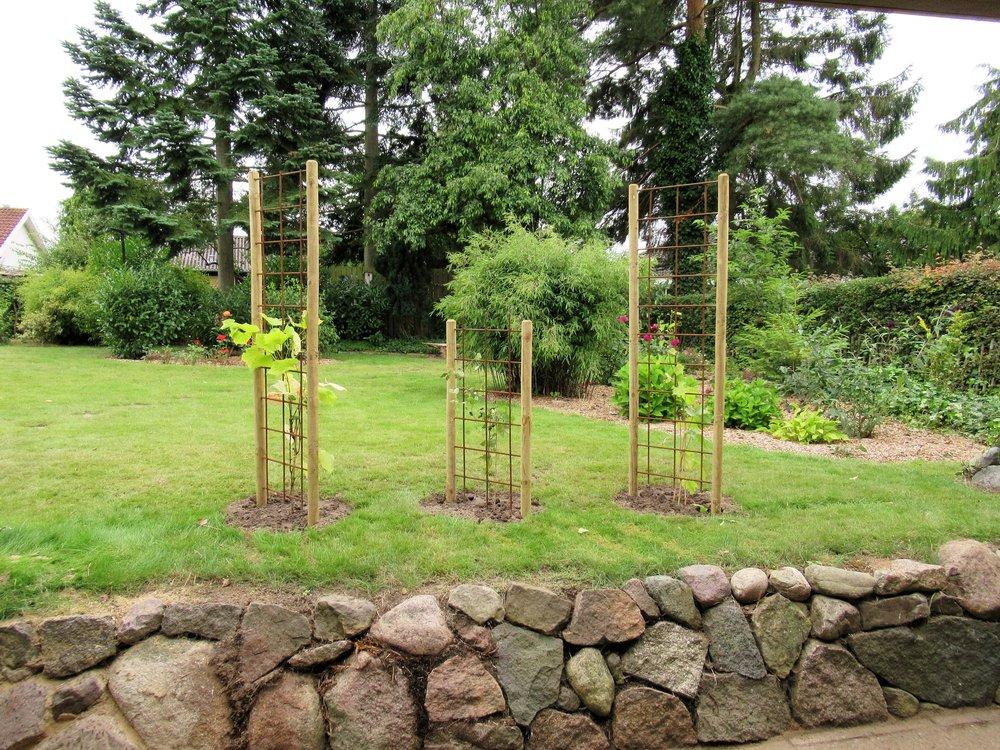 Havedesign med enkelte blomsterbede og flot græsplæne